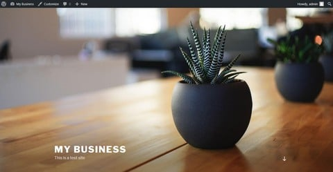 how to make a wordpress website without coding